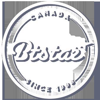BTSTAR - Ottawa web solutions